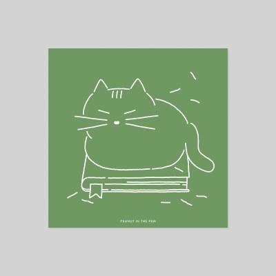POSTCARD. 책 고양이
