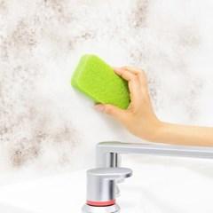 [LEC] 물세척 곰팡이제거 욕실청소 크리너 [S-726]