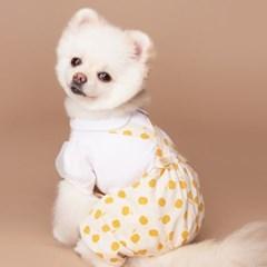 뿜뿜 강아지 호박 바지 _ Yellow Color