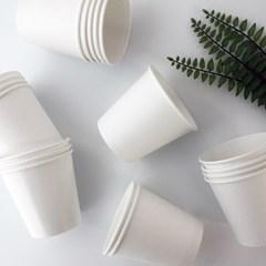 깔끔한 위생을 위한 종이컵 10종 주말특가