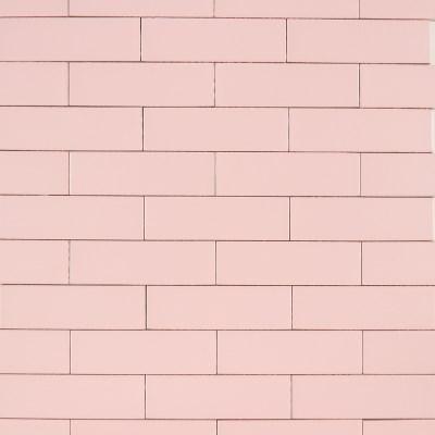 비비드 피치 핑크 [50*250]