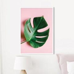 스위트몬스테라 식물 액자 나뭇잎 그림