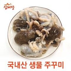 [심해향]국내산 생물 주꾸미 500g/1kg/2kg 자연산 제철 주꾸미