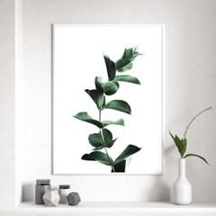 싱글유칼립투스 식물 액자 나뭇잎 그림