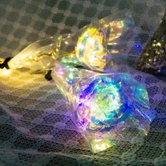 [반짝조명] LED 트윙클 장미 무드등