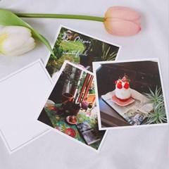 A Daily Postcard 8종