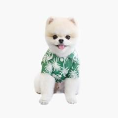 와이키키 셔츠 그린 (WAIKIKI SHIRT GREEN)
