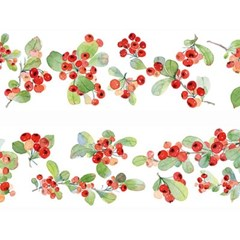 열매 마스킹테이프