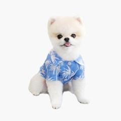 와이키키 셔츠 블루 (WAIKIKI SHIRT BLUE)