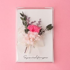 카네이션 프리저브드플라워 카드+투명케이스_카네이션핑크