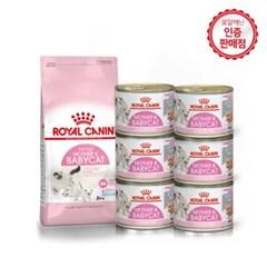 [로얄캐닌] 고양이사료 베이비캣혼식세트 (4kg+베이비캔 6P)