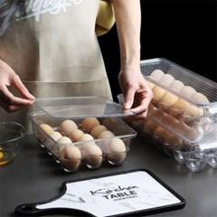 모던 PET 투명 계란 보관함