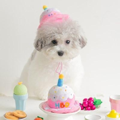 바잇미 강아지 파티케이크 모자 장난감 생일케이크