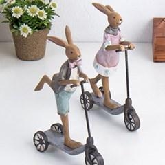 퀵보드 토끼 2p set_(1919672)