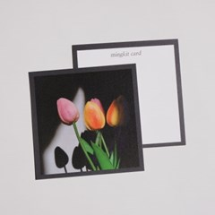 밍키트 튤립 감성 엽서