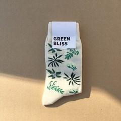 [Organic cotton] Jeju Bracken