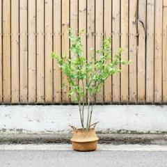 내추럴 그린 나무 조화 135cm