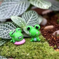 테라리움 꾸미기 미니 개구리 2종