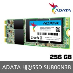 ADATA 내장SSD M.2 SATA SU800N38 256GB