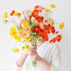고급 양귀비 꽃 조화 5color [시들지않는꽃 조화꽃 실크플라워]