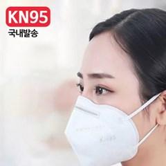 [국내발송] 3D 입체 성인용 KN95 위생 마스크 10매_(892192)