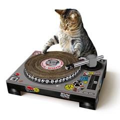 음악 좀 하는 고양이죠!? 스크래처/키오스 장난감