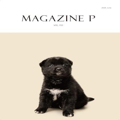 반려동물 매거진P - 2020년 6월호 (너와나의비밀)