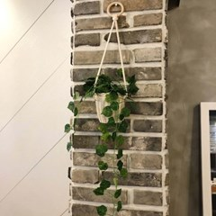 DIY 라탄 벽걸이 화분 만들기