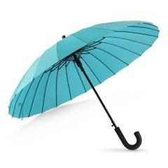 까르벵 24살대 네이처 자동 장우산