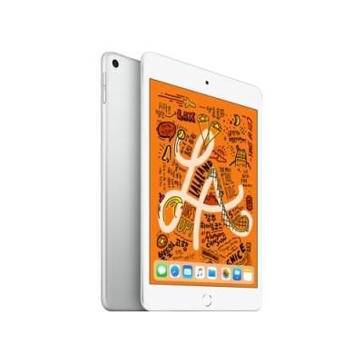 iPad mini (5세대) Wi-Fi 256GB 실버