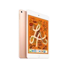 iPad mini (5세대) Wi-Fi 64GB 골드