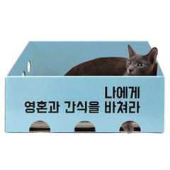 [노리노리캣] 카펫 스크래쳐 박스 블루(뚱냥이용) / 국내생산