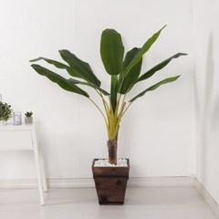 바나나트리set 125cm_KO(2-2) 조화 나무 인조 FREOFT_(1822529)
