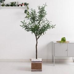올리브나무set 165cm_KO (2-2) 조화 나무 인조 FREOFT_(1822524)