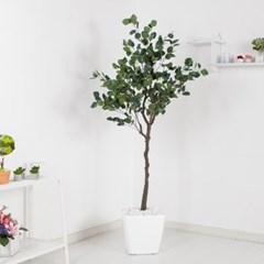 유카리나무set 180cm_KO (5-6) 조화 나무 인조 FREOFT_(1822522)