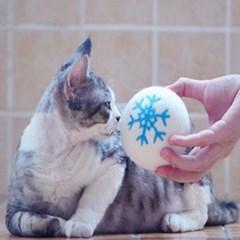 고양이 강아지 장난감공 양모볼