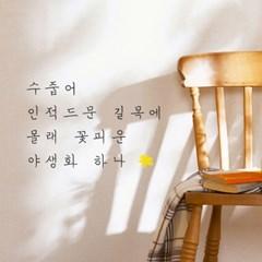 수줍은 야생화 감성 인테리어 레터링 스티커