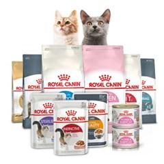 [로얄캐닌] 고양이사료 건식/습식 BEST 사료 모음