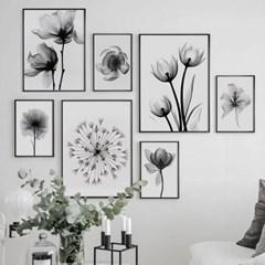 모던 심플 엑스레이 식물 꽃 모노톤 인테리어 사무실 그림 액자 7종