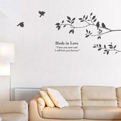 Birds in Love-1