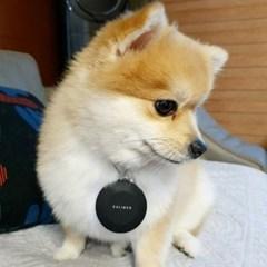 [에어칼리브] 반려동물 휴대용 미니 목걸이 공기청정기