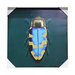 앳하스홈 아트 캔버스 픽처 50*50cm_ 딱정벌레 [beetle]