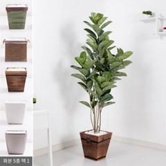 네츄럴고무나무set 160cm_KO(2-3) 조화 나무 FREOFT_(1834993)
