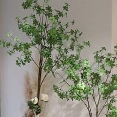 엔카인셔스 인테리어 조화나무 대형식물