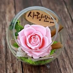 시들지않는 꽃 한송이 장미 유리병 프리저브드 드라이플라워
