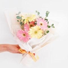 달콤한 사랑 한스쿱, 연핑크&크림 거베라 꽃다발(생화/전국택배)