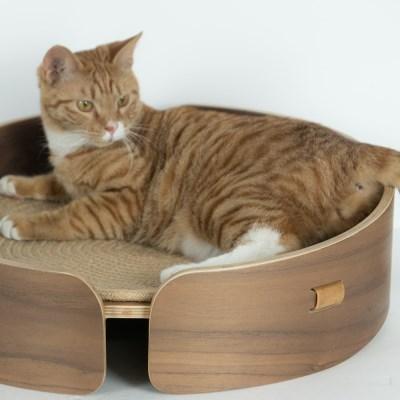 원목 고양이 스크래쳐 해먹 침대 미니빈 월넛