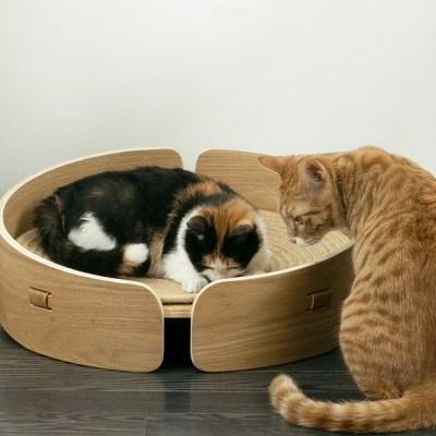원목 고양이 스크래쳐 해먹 침대 미니빈 오크