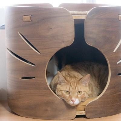 원목 고양이 숨숨집 마이캐빈 월넛