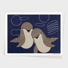 카드 / 107 병코돌고래